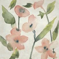Blush Pink Blooms I Framed Print