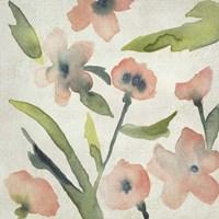 Blush Pink Blooms II Framed Print