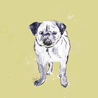 Super Cute Pug Fine Art Print