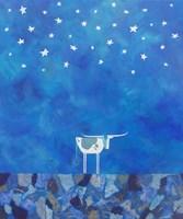 Stars at Night Fine Art Print
