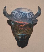Bison Peak Fine Art Print