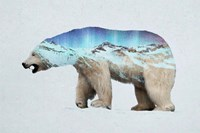 The Arctic Polar Bear Fine Art Print