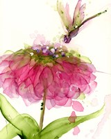 Dragonfly and Zinnia Fine Art Print