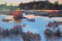 Ace Basin Creek Fine Art Print