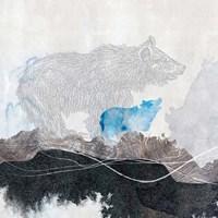 Bear 1 Fine Art Print