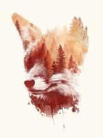 Blind Fox Fine Art Print