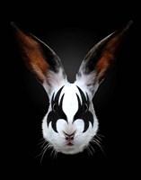Rabbit Rocks Fine Art Print