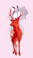 Useless Deer Fine Art Print