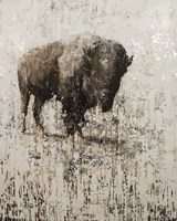 Lone Buffalo Fine Art Print
