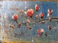 Spring Blossoms Fine Art Print