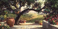 Napa Patio Fine Art Print