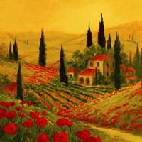 Poppies of Toscano II Fine Art Print