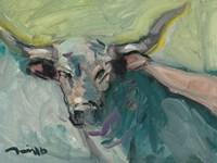 Longhorn Fine Art Print