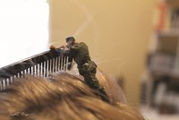 Army The Comb Fine Art Print