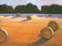 While The Hay Shines Fine Art Print