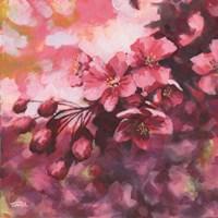 Blossoms #1 Fine Art Print