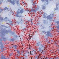 Blossoms #3 Fine Art Print