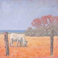 Coastal Cow Fine Art Print