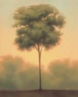 Solitude IV Fine Art Print