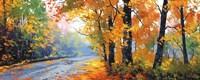 Autumn Backlight Fine Art Print