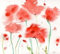 Poppy Reds Fine Art Print