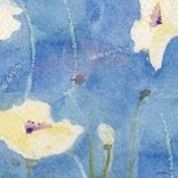White Poppy Fine Art Print