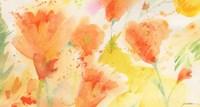 Windblown Poppies #1 Fine Art Print