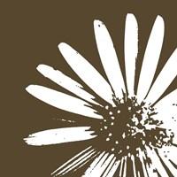 Graphic Flower 2 Fine Art Print