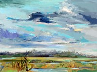 Marsh Skies Fine Art Print