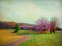 Nature Is Divine Fine Art Print