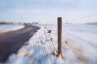 Walking on the Edge of Winter Fine Art Print