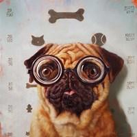 Canine Eye Exam Fine Art Print