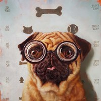 Canine Eye Exam Fine Art Print