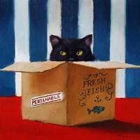 Cat Burglar Fine Art Print