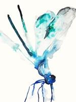 Blue & Green Dragonfly Fine Art Print