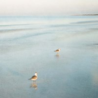 Two Birds on Beach Fine Art Print