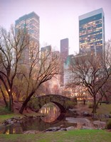 Central Park, NYC Fine Art Print