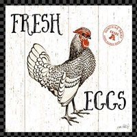 Free Range Fresh IV Checker Border Fine Art Print