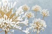 Golden Spring Blue Gray Fine Art Print
