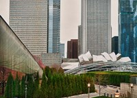 Chicago 350 Fine Art Print