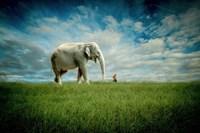 Elephant Follow Me Fine Art Print