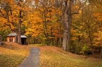 Autumn Home Fine Art Print