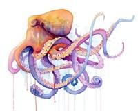 Octopus 2 Fine Art Print