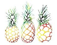 Retro Pineapples Fine Art Print