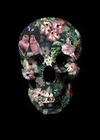 Tropic Skull Fine Art Print