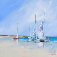 Aspendale Sails Fine Art Print