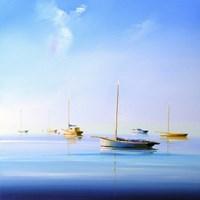 Blue Couta 2 Fine Art Print
