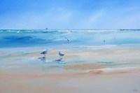 Late Gulls Fine Art Print