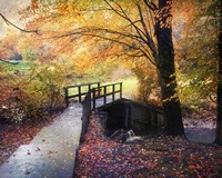 Foot Bridge Fine Art Print