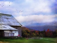 Vermont Afternoon Fine Art Print